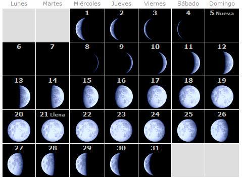 Ampliando conciencias el creador importante evento en la for Proxima luna creciente
