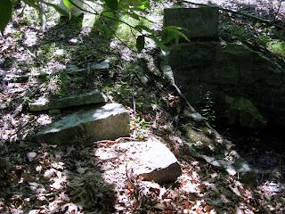Birch Spring steps