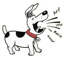 Dog Barking Complaint Red Deer