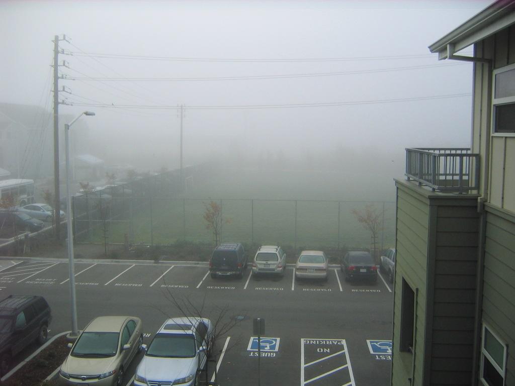 [foggy+morning.jpg]