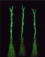 Glow in the dark brooms!