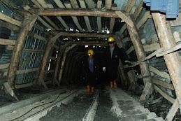 Madencigenc sitesine direk giriş=\\