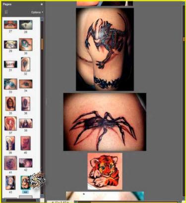 download 265 amazing tattoos design pdf torrent 1337x. Black Bedroom Furniture Sets. Home Design Ideas