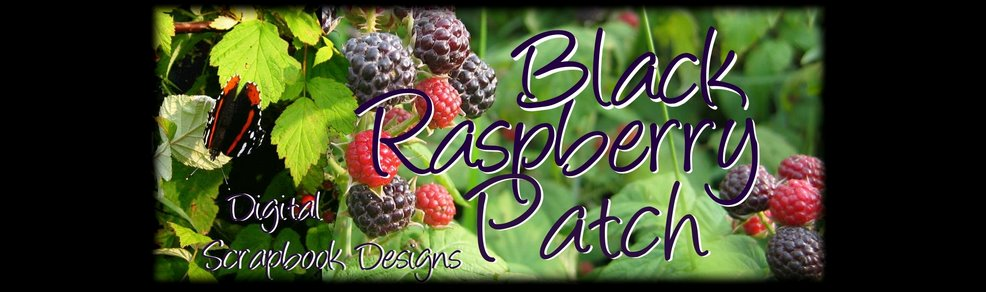 Welcome to The Black Raspberry Patch