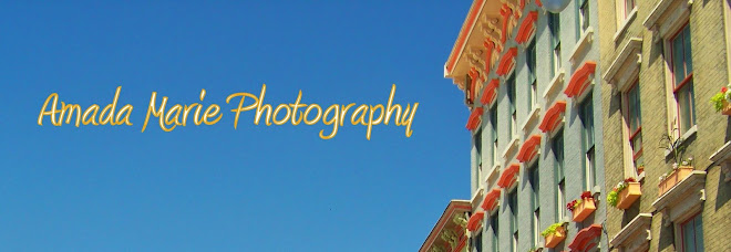 Amada Marie Photography