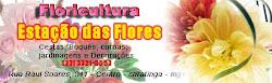 Floricultura Estação das Flores