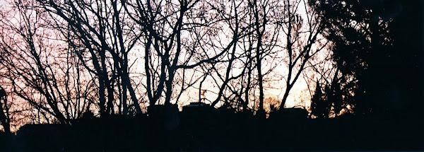 alba a pierino