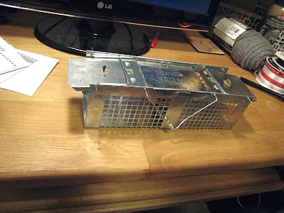 mouse trap instructions 2010
