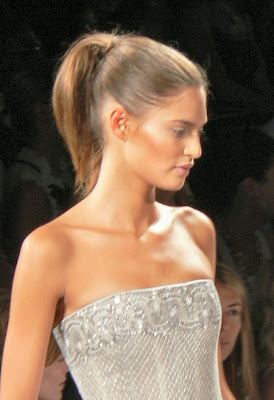 Sleek Ponytails 2010