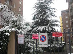 Milano sepolta dalla neve e .. dall'incapacità, ma dove sono gli operatori della Zona 7? Bene il ..