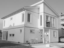 Villa vit