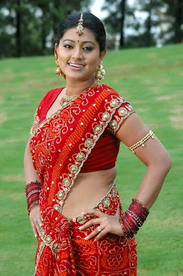 Images Of Hot Real Life Indian Housewife In Low Hip Transparent Saree