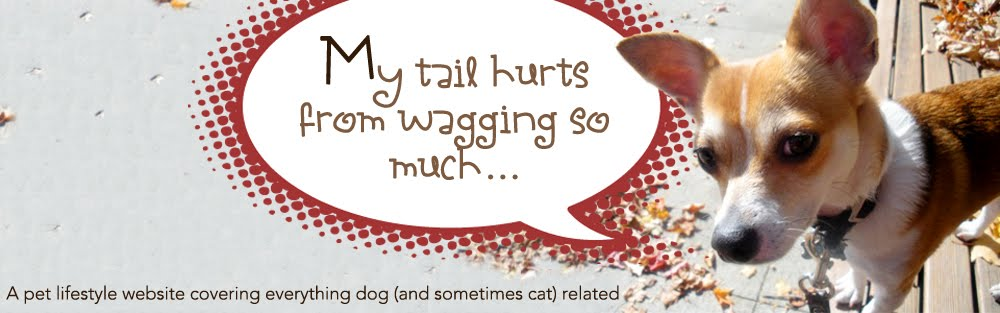 My Tail Hurts From Wagging So Much