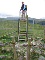 High stile in forest plantation