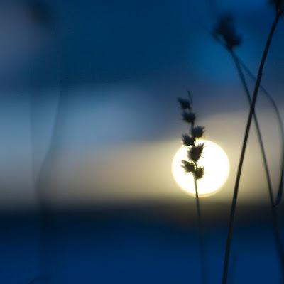 Landscape Photography, sunset, the sun