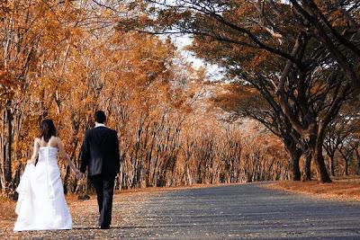 Wedding Photography, wedding, wedding photo