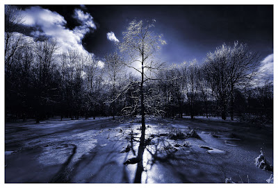 frozen shadows photography