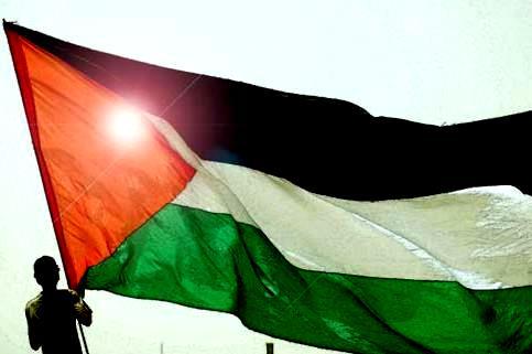 http://2.bp.blogspot.com/_jLmX_8LH3uo/TFBM220Q7EI/AAAAAAAAGls/MJCFTvKZc9E/s1600/PLO+Flag.jpg