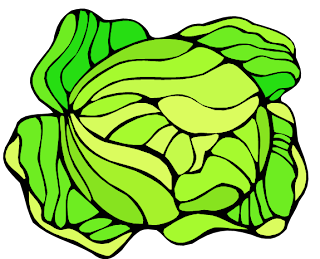 chou-jardin-chevre-lapin
