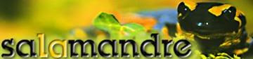 Magazine nature adolescent adulte la salamandre