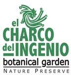 BI in El Charco del Ingenio