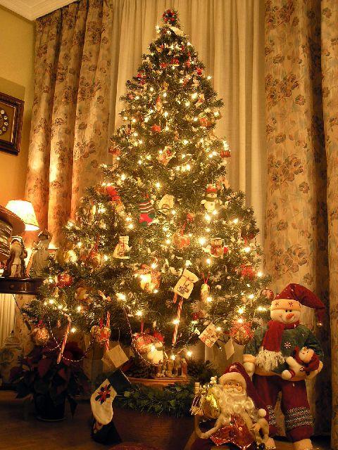Emma Stone's Christmas Tree  Arbol+5