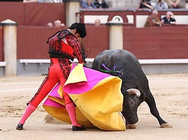 Catalunya se pregunta si el dolor d los toros es ético[PROU] Toros_WEB