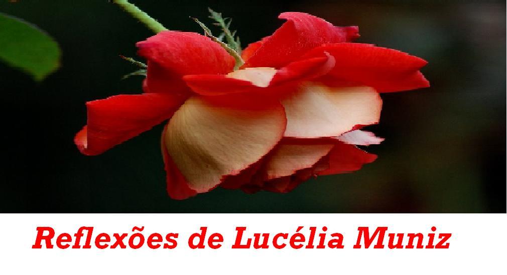 Reflexões de Lucélia Muniz