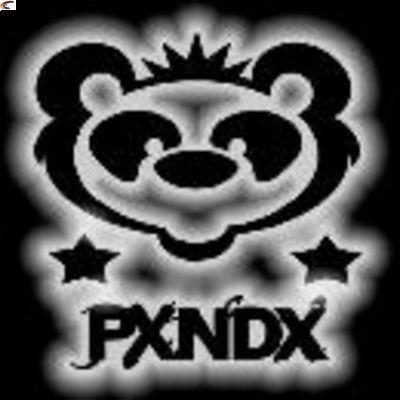 imagen grupo panda:
