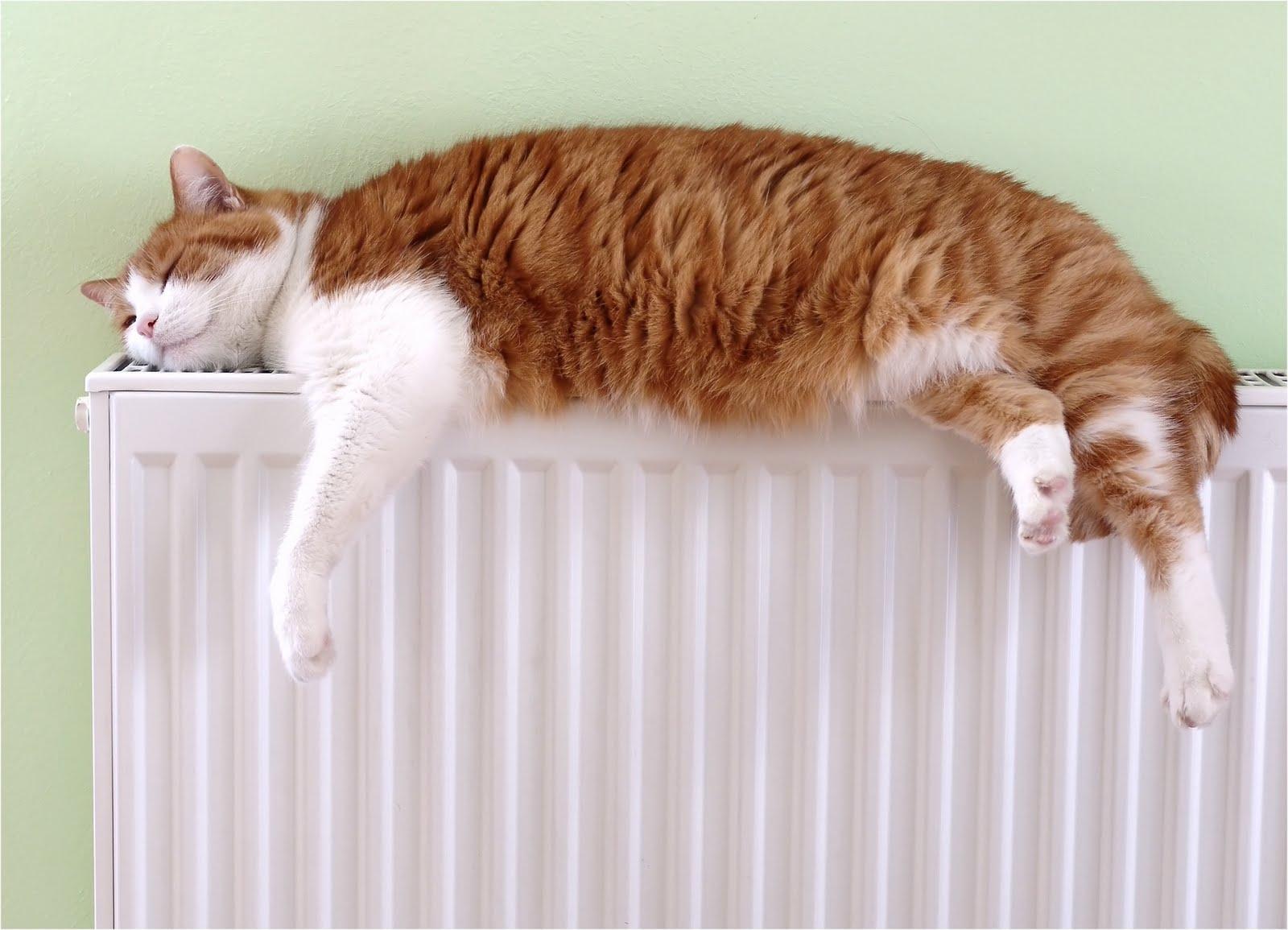 M s que energ a calefacci n termosolar sostenible - Que calefaccion es mas economica ...