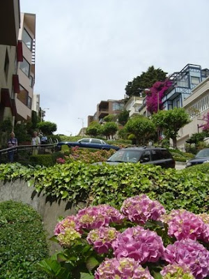 hortensia on Lombard Street