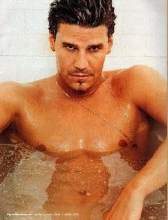 ... you talk about David Boreanaz (with particular reference to being naked) ...