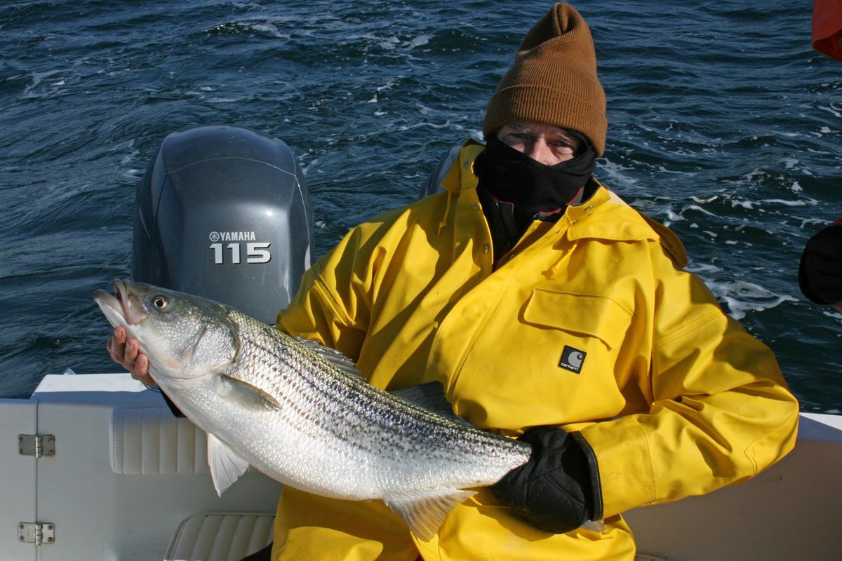 Striper fishing from rudee inlet captain scott erickson for Rudee inlet fishing report