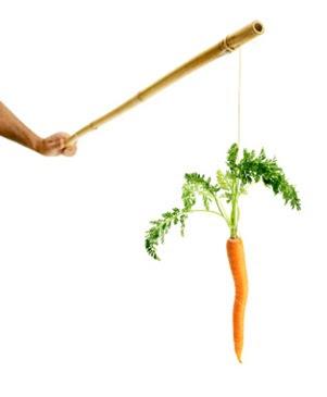 Motivazione: il bastone e la carota funzionano?
