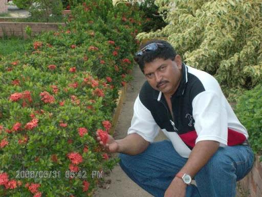 http://lea-edwinlicones.blogspot.com/googled1e72b91d1eb0055.html .