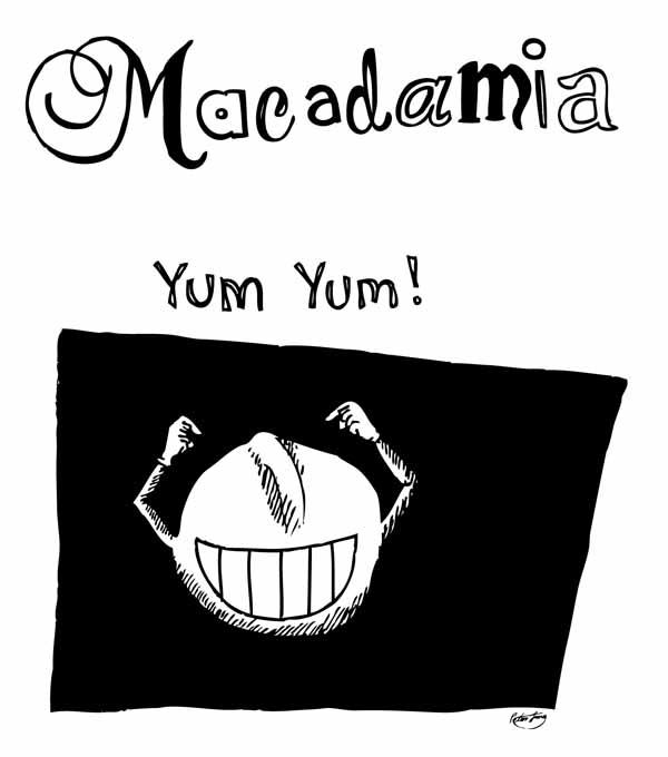 macadamia nut character yum yum