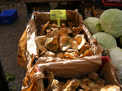 Çintar mushrooms on Çalış Market
