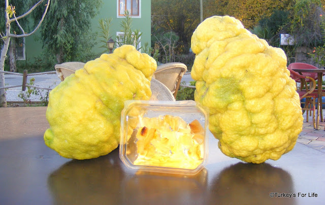 Turkish Fruit - Bergamot