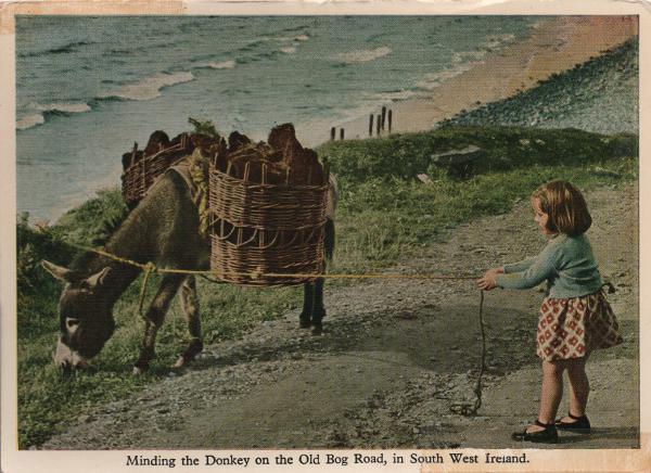 child with donkey on a rope, peat in donkeys panniers