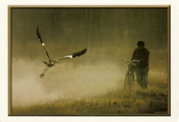 man pushing bicycle over grass with bird taking off through mist
