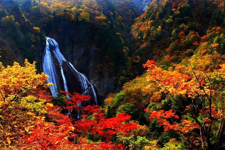 http://2.bp.blogspot.com/_jVVDVzcqb9c/TJet1SCLA7I/AAAAAAAAN2M/wtoLTzFjMJM/s1600/jesen-1.jpg