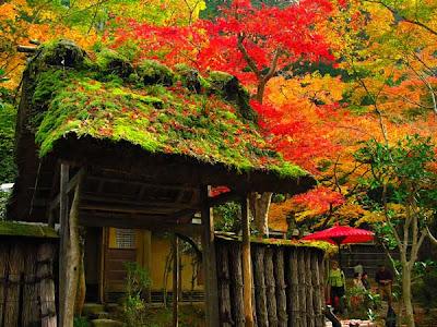 wallpaper japanese. wallpaper japanese garden.