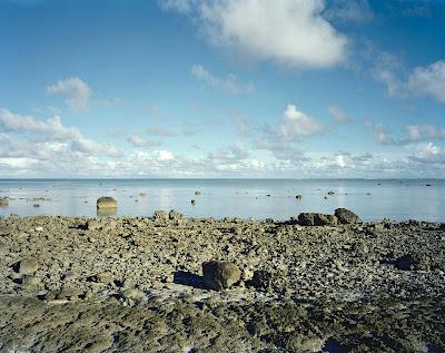 Bikini Island, Shattered Coral 1999