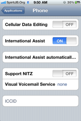 Cellular Data Network (GPRS/EDGE/APN) Settings in iPhone 4 on iOS 4.1