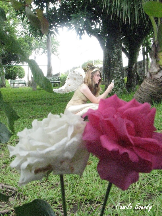Mariposa Blanca- Exposición virtual