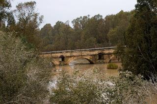Puente de Catuja