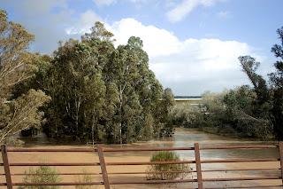 El río Guadalete y el Puente de Cartuja
