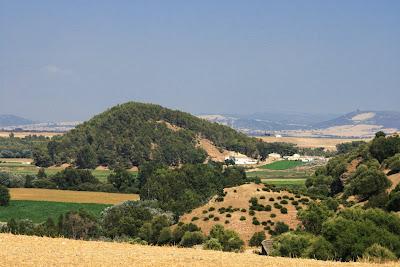 Cerro de 'La Harina' (Torrecera)