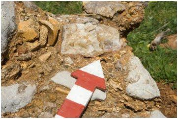 Conglomerado de huesos con rotura antigua