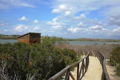 Observatorio de aves en la Laguna de Medina